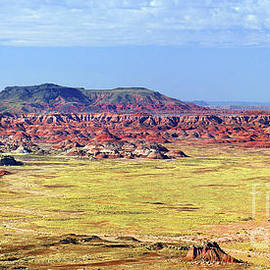 Painted Desert Panorama by Douglas Taylor