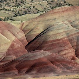 Painted High Desert by Steven Clark