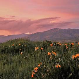 Painted Landscape by Larry Kniskern