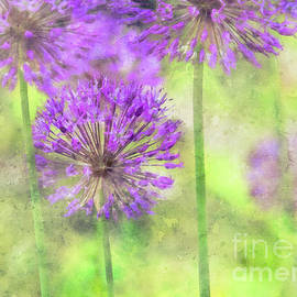 Painterly purple flowers by Flo Photography
