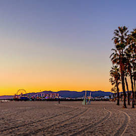 Palms And Pier by Gene Parks