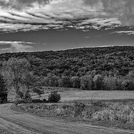 Paltz Point Mohonk Dirt Road Bw by Susan Candelario