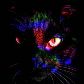 Pandora Spocks Black Cat Number 3A by Ben Stein