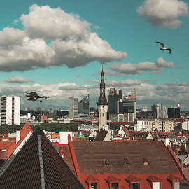Panorama of the Old Town of Tallinn, Estonia. Summer time by Masha Lince
