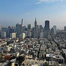 Panoramic Photo of San Francisco Taken from Telegraph Hill by Lyuba Filatova