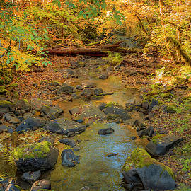 Panther Creek 0943 by Kristina Rinell