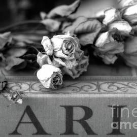 Paris Roses Books Romantic Black White Roses Floral Books - Paris Roses On Paris Book  by Kathy Fornal