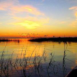 Parris Island Sunrise by Matt Richardson