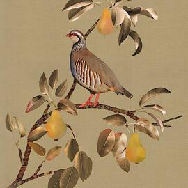 Partridge In Pear Tree by Spadecaller