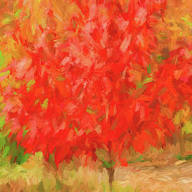 Red Passion Of Color by Kevin Lane