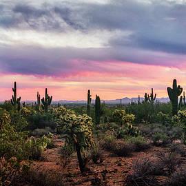 Saija Lehtonen - Pastel Desert Skies At Sunset
