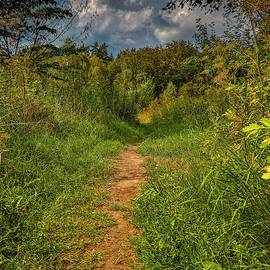 Path In Greenary #i0 by Leif Sohlman