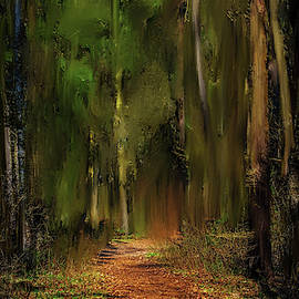 Path Into Fairy Forest #i6 by Leif Sohlman