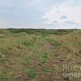 Path Near De Mokbaai On Texel by Chani Demuijlder