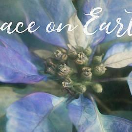 Peace On Earth - Blue Poinsettia by Teresa Wilson