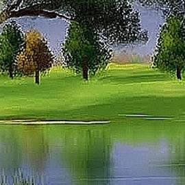 Peaceful Creek by Teresa Trotter