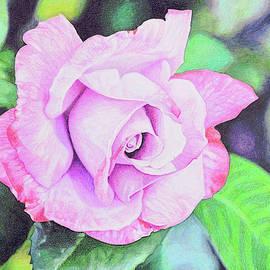 Peaceful lavender  by Paramjeet Kaur