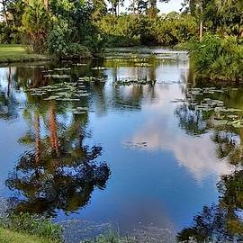 Peaceful Reflections by Valerie Rice