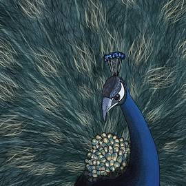 Peacock Streamlined by Joan Stratton
