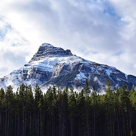 Peak Above the Trees by Dana Hardy