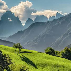 Peak And Meadow by James Billings