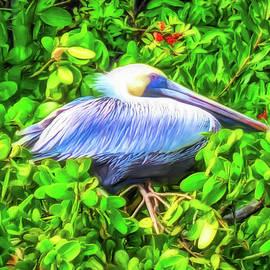 Pelican in the Mangroves by Susan Hope Finley