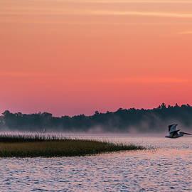 Pelican Mist by Patti Deters
