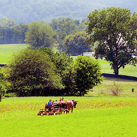 Pennsylvania Amish Country - #1842 by Paul W Faust - Impressions of Light