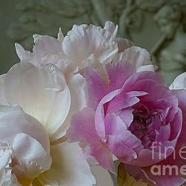 Peonies In The Classic Style. by Alexander Vinogradov