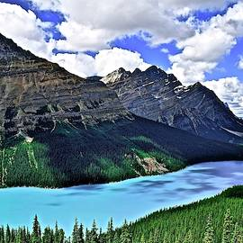 Peyto in Banff National Park by Frozen in Time Fine Art Photography