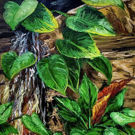 Phipps Rainforest by Steph Moraca