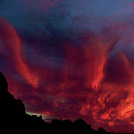 Phoenix Risen2 by Randy Oberg