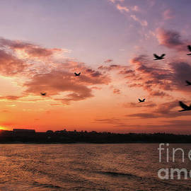 Picturesque Sunset by Flo Photography