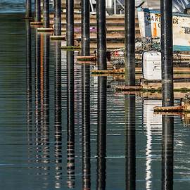 Pilings And Ripples by Robert Potts