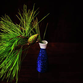 Pine Cone and Chinese Vase by Cassi Moghan