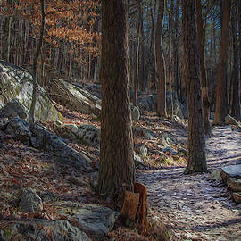 Pine Mountain Trail by Keith Smith