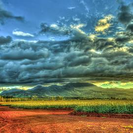 Pineapple Sunset Dole Pineapple Fields North Shore Oahu Hawaii Farming Landscape Art by Reid Callaway