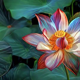 Pink Lotus Wallpaper by Artly Studio