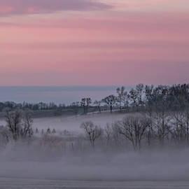 Pink Misty Morning #3 - Misty Field by Patti Deters