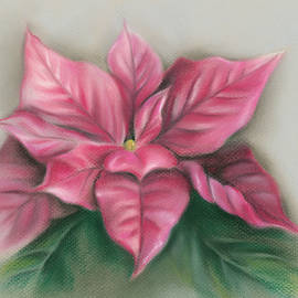 Pink Poinsettia by MM Anderson