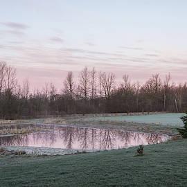 Pink Pond - A Peaceful Daybreak On The Farm by Georgia Mizuleva