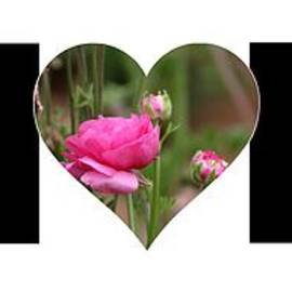 Pink Ranunculus In Heart Mom Big Letter-girls by Colleen Cornelius