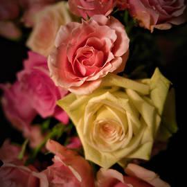 Pink Rose Bouquet 3 by Tara Shalton