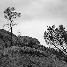 Pinnacles Np II Bw by David Gordon
