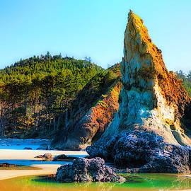 Pinnacle's Tide Pool on Oregon Coast by Dee Browning