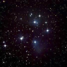 Pleiades Star Cluster And Nebula by Plefevre