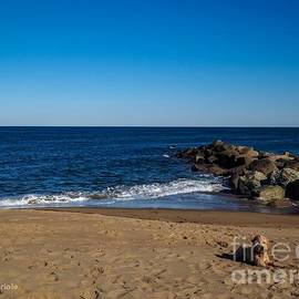 Plum Island Scene by Mary Capriole