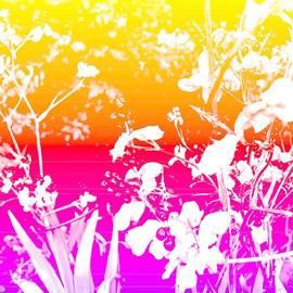 POP ART - Summer Blooms Bright by Miriam Danar