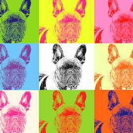 Pop Pug by Geraldine Scull