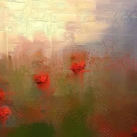 Poppies by Zhanna Davtyan